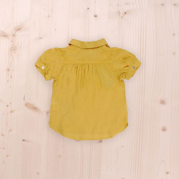 Picture of Mustard blouse