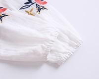 Imagen de blusa boho con bordados